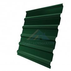 Двухсторонний Профнастил С20  Pe 0,4мм RAL 6005 зеленый